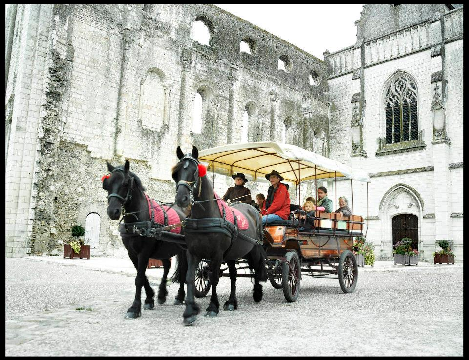Horse and carriage rides - Loches and Beaulieu-Les-Loches