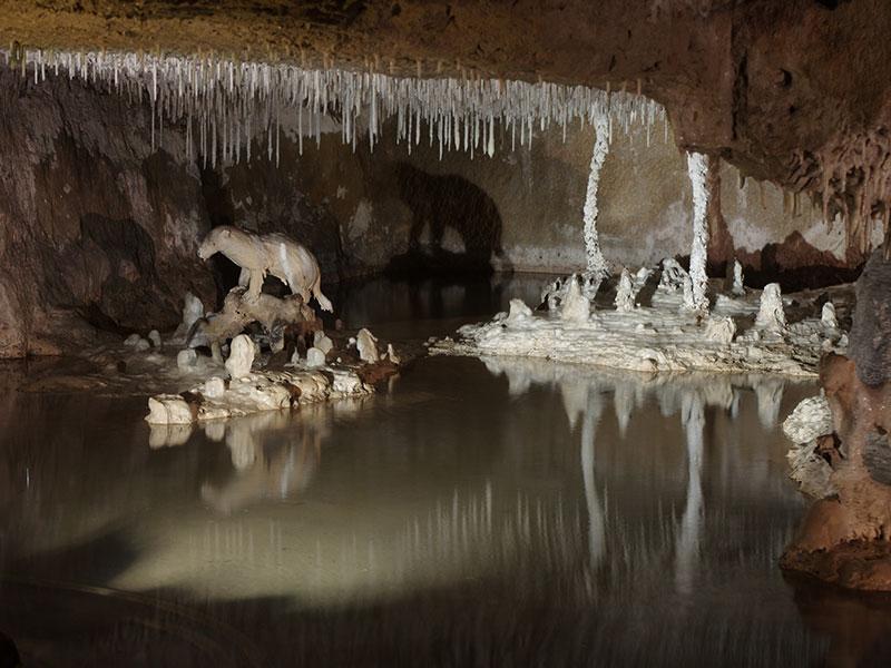 Grottes pétrifiantes de Savonnières©