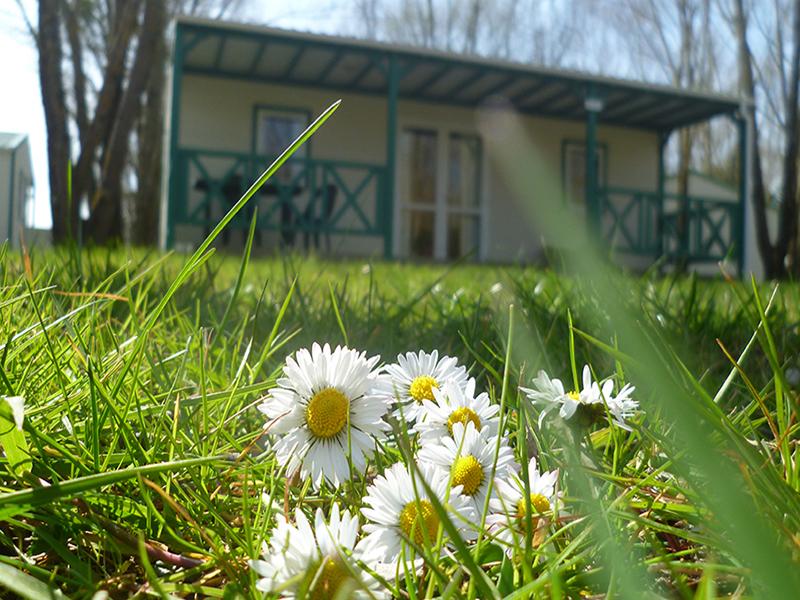 Camping Les Saules / Cheverny©